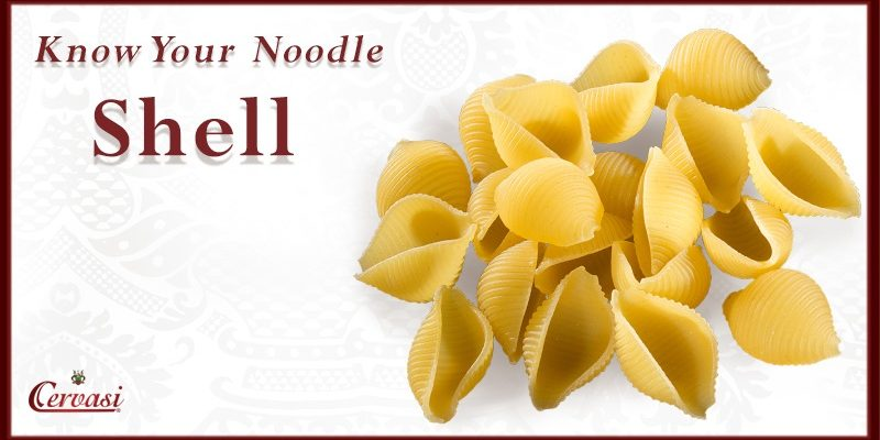 Cervasi Shell is the featured Know Your Noodle pasta